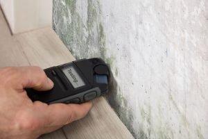 mold testing cincinnati, mold remediation cincinnati