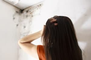 mold removal milford, mold cleanup milford, mold remediation milford